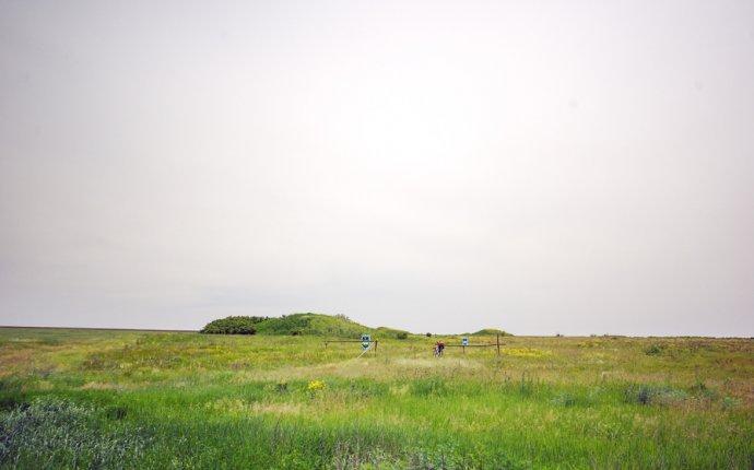 Еланецкую степь» расширили на 1335 гектар: уникальный заповедник