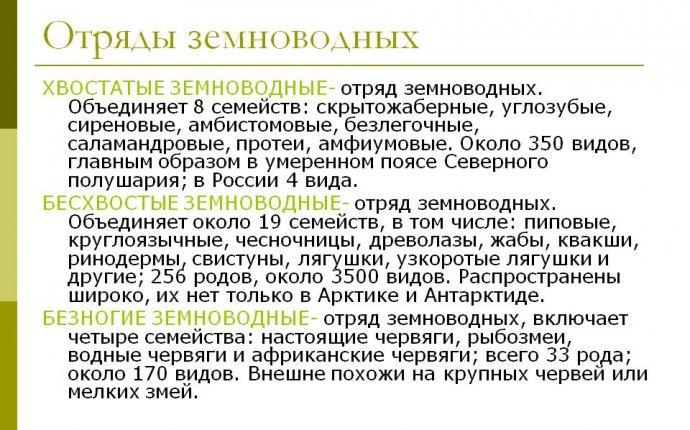 Отряды земноводных - Презентация 5585-3