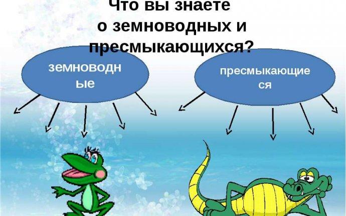 Презентация на тему Земноводные и пресмыкающиеся - скачать